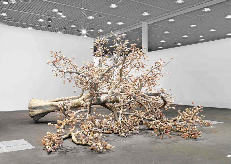 The Waq Tree, 2009; Image Credit: Stefan Altenburger Photography Zürich