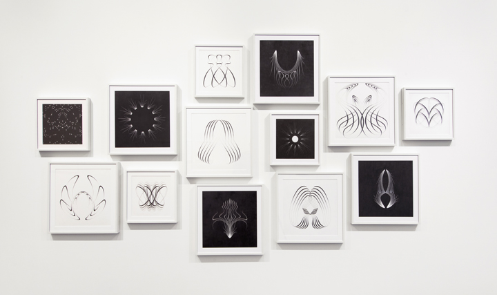 "6)Installation of  ""Symmetrical Procedure"" drawings, graphite on paper, ""May I Draw,"" Joe Sheftel Gallery, NYC, 2013."